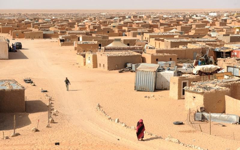Sahara Tinduf Tadamum