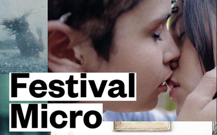 Nazioarteko mikrofilmen Micro jaialdia